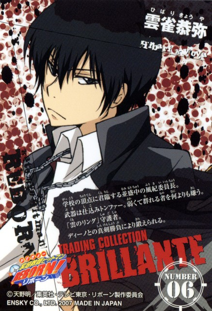 Katekyo Hitman Reborn!: Trading Collection