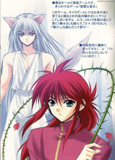 Hiro Suzuhira, Yuu Yuu Hakusho, Youko Kurama, Kurama, Doujinshi