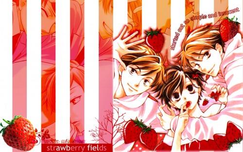 Hatori Bisco, BONES, Ouran High School Host Club, Hikaru Hitachiin, Haruhi Fujioka Wallpaper